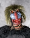 Morris Costumes 70-05BS Baboon Mask