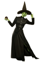 Alexanders Costumes AA-86001SM Classic Witch Adult Small