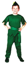 Morris Costumes AF-85MD Elf Child Medium