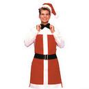 Morris Costumes BB-365 Apron Santa Bartender