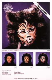 Morris Costumes DD-373 Instruction Shts Cat Animal