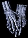 Morris Costumes DU-975 Hands Skeleton Black