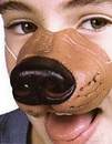 Morris Costumes FA-133 Nose Dog W Elastic