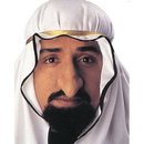 Morris Costumes FA-142 Sheik Fagin Nose