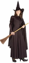 Forum Novelties 58421 Classic Witch Costume Web