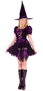 Funworld 120034ML Witch Purple Punk Adlt Md/Lg