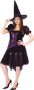 Funworld 120035 Witch Purple Punk Adlt Plus