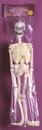 Funworld 8837 Skeleton 36 In Glow