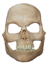 Morris Costumes HD-600118 Prosthetic Skull Full Face