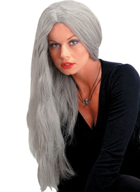 Morris Costumes MR-176001 Wig 24 Inch Straight Grey