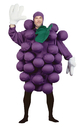 Morris Costumes PA-9500 Grapes Purple Adult Costume