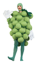 Morris Costumes PA-9501 Grapes Green Adult Costume