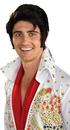 Rubies 51789 Elvis Wig