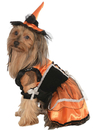 Rubies RU-887822SM Pet Costume Orange Witch S
