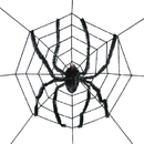 Morris Costumes SS-82857 Spider Web With Spider