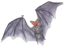 Morris Costumes SS-87076 Light Up Demon Bat
