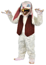 Morris Costumes TA-408 Peter Rottentail 1 Box=1