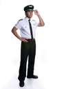 Morris Costumes UP-331LG Adult Pilot Large