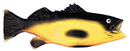 Morris Costumes VA-32 Rubber Fish