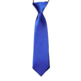"(Price/10 Pcs)TopTie Kid's Solid Color Royal Blue Necktie 10"" Youth Neck Tie"