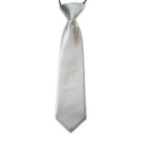 "(Price/10 Pcs)TopTie Kid's Solid Color Silver Gray Necktie 10"" Youth Neck Tie"