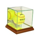 Perfect Cases Softball
