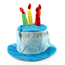 Aspire Birthday Hat, Birthday Cake with Candles Hat, Blue/ Pink