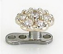 Painful Pleasures Custom-205-DT014-BG 14kt White Gold Internally Threaded Jeweled flower Top - Custom Made - Price Per 1