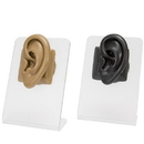 Painful Pleasures DIS-108 Realistic Adult-Sized Silicone Left Ear Display - Black Body Bit Version 2