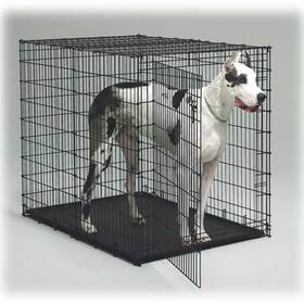 1154U Big Dog - Dog Crate Big Dog Crate 54In L X 35In W X 45In H