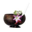COCONUT CUP (10 OZ.)