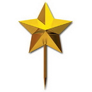 GOLD MOLDED STAR PICK (3IN.)
