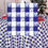 BLUE GINGHAM 54IN.X108IN. PLASTIC TABLEC