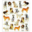 DOGS OUTLINED IN GOLD STICKERS