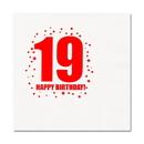 19TH BIRTHDAY LUNCHEON NAPKIN 16-PKG
