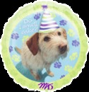 PARTY PUPS MYLAR BALLOON(18IN)