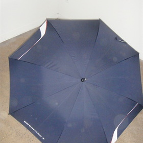 RaceChairs BMW Sauber F1 2006 Umbrella