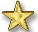 Custom Gold Star Stock Design Plastic Lapel Pin