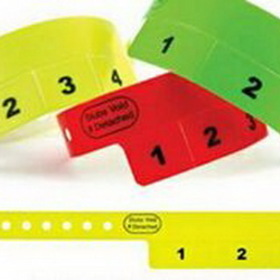 Custom Custom Vinyl Cash Tag Wristband (2 Tab), Price/piece