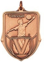 Custom 100 Series Stock Medal (Male Volleyball Player) Gold, Silver, Bronze