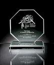 Custom Octagonus Maximus Award - Jade Glass (4 3/8