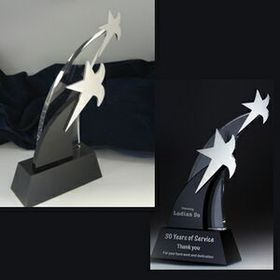 Unique Star Award (Sand Blasting), Price/piece
