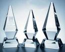 Custom Excellence Award - Optic Crystal (12