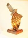 Custom Cast bronze eagle on cast bronze American flag, 15