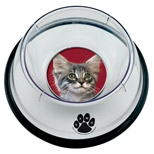 Small Pet Bowl w/ 1 Photo Insert, Price/piece