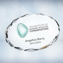 Custom Color Imprinted Clear Gem Cut Oval Optical Crystal Paper Weight, 3/4