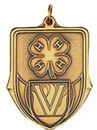 Custom 100 Series Stock Medal (4h) Gold, Silver, Bronze