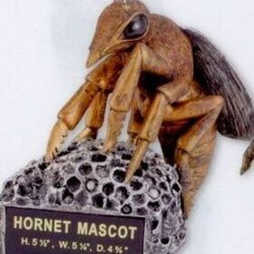Hornet School Mascot, Price/piece