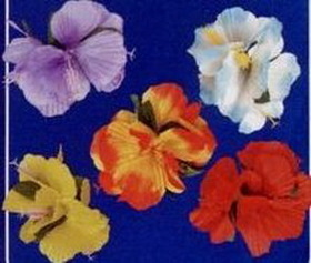 Assorted Hair Flower Clip On, Price/12pcs