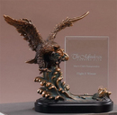 Custom Eagle Shield Award with Glass Plaque. 9-1/2